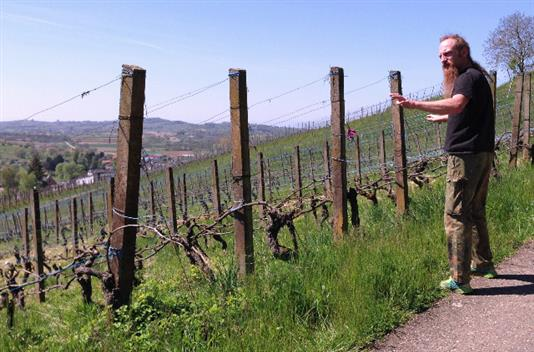 Sven Enderle grew up in Ettenheim and is now among the few working these old vine parcels (photo by J. Kemp)