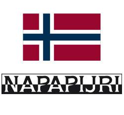 logo napapijri 2.jpg