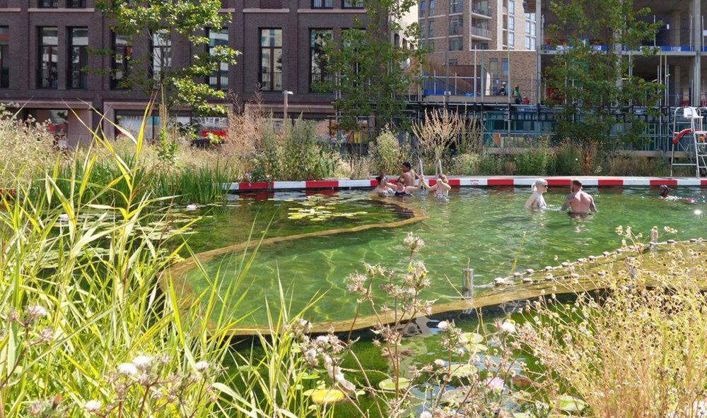 A natural open air pool in the city? The Kings Cross Pond in London could be seen as a prototype. Une piscine naturelle en plein air dans la ville? Le Kings Cross Pond à Londres pourrait être considéré comme un prototype. Een natuurlijk openluchtzwembad in de stad? De Kings Cross Pond in Londen kan worden gezien als een prototype.