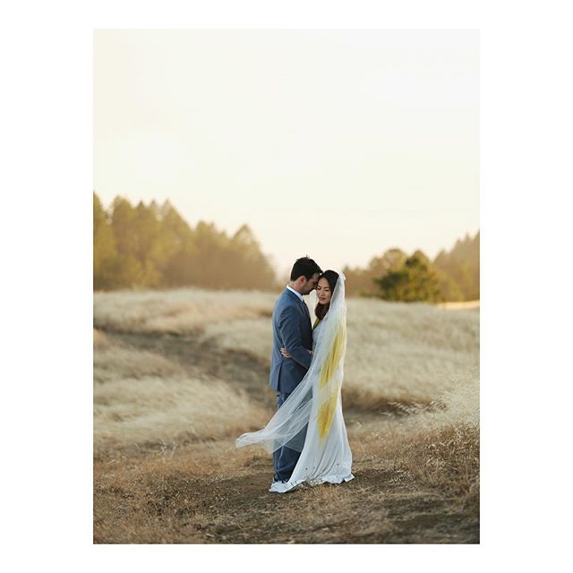 When fog and light meet ♡ . Such a wonderful day after session with these two loves!