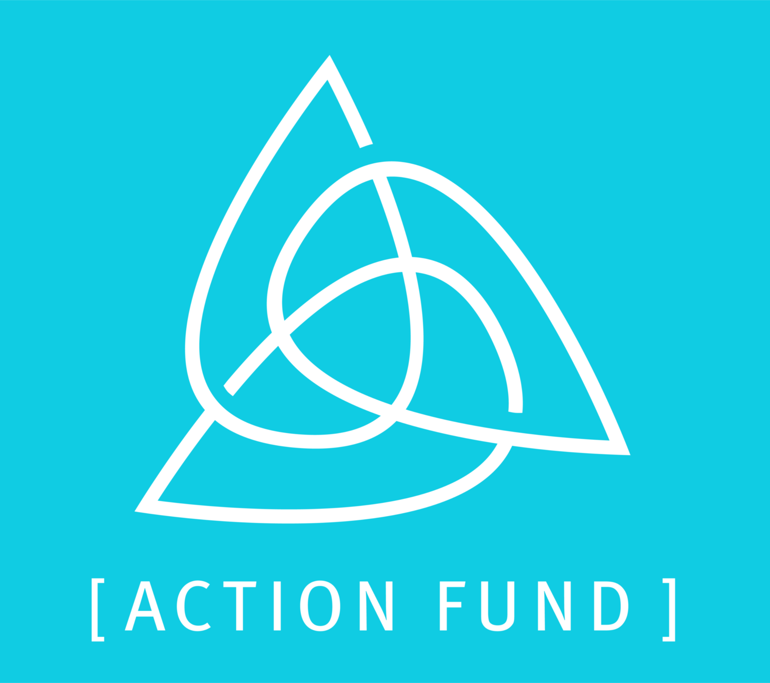 OEC Action Fund