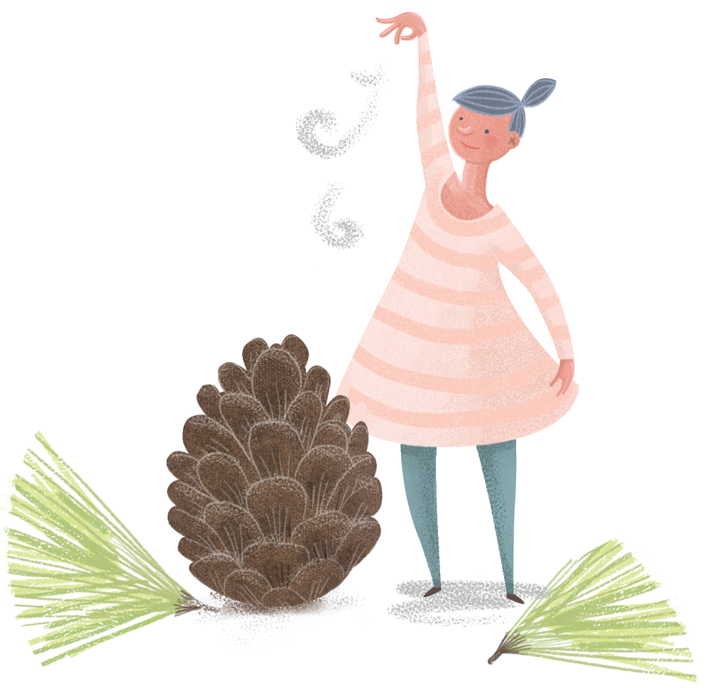 pinecone_flat.png