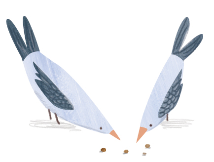 +03_pecking_birds.jpg