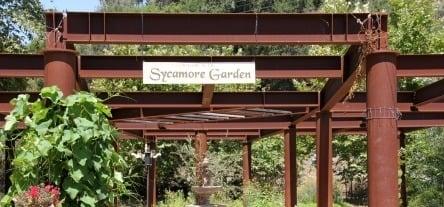 Sycamore-Garden-Avila.jpg