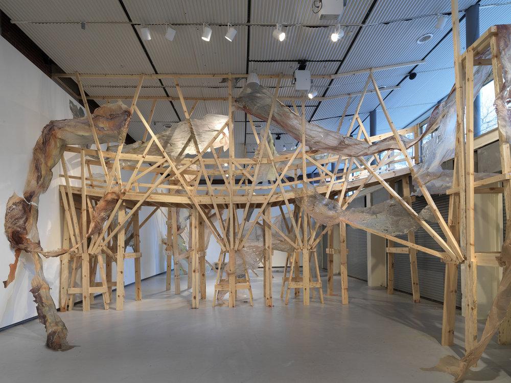 images courtesy Hyde Park Art Center