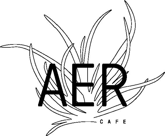 aer-logo1@2x.png