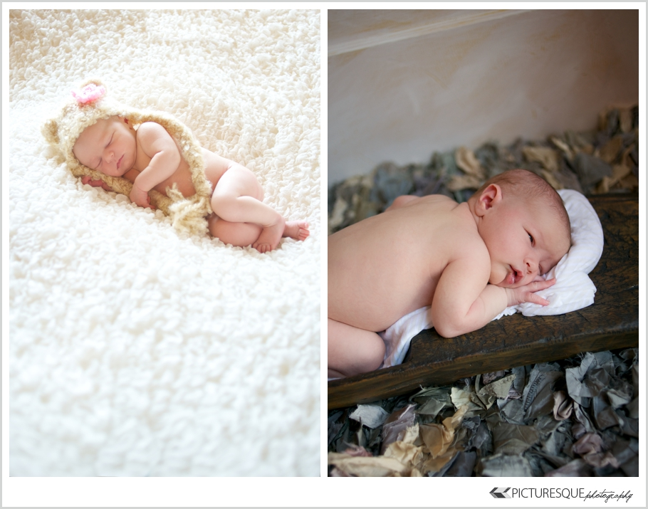 newborn photographer sioux falls