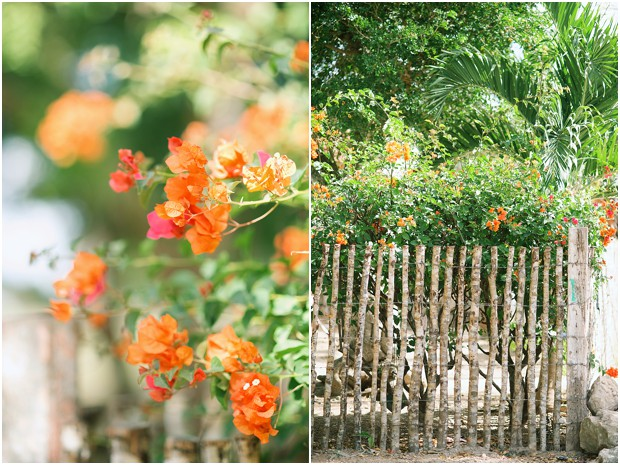 Dominican Republic travel photography by Lauren Neff of Picturesque