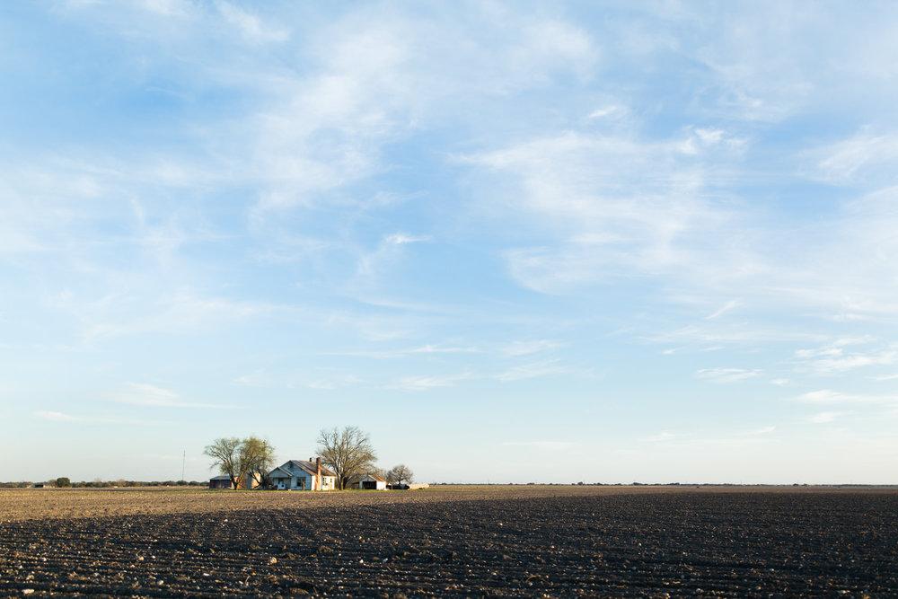 farm life-8.jpg