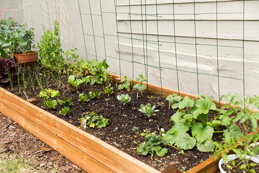 fond life gardening-28.jpg