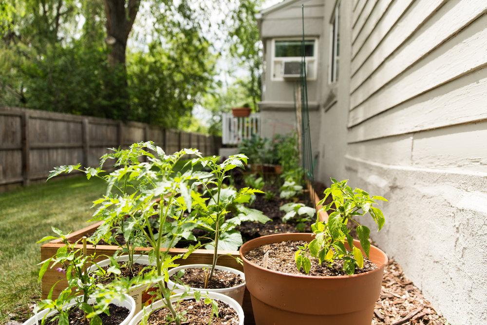 fond life gardening-34.jpg