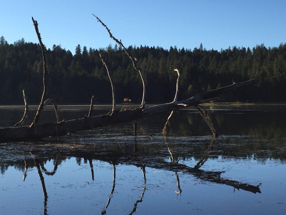 Lake Selmac
