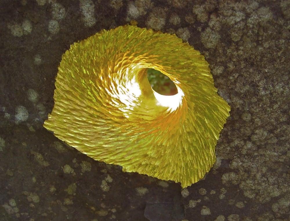 Gold leafed portal