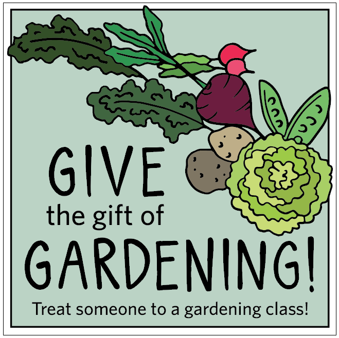 An image created to promote the garden's upcoming workshops on a variety of social media platforms during the holiday season