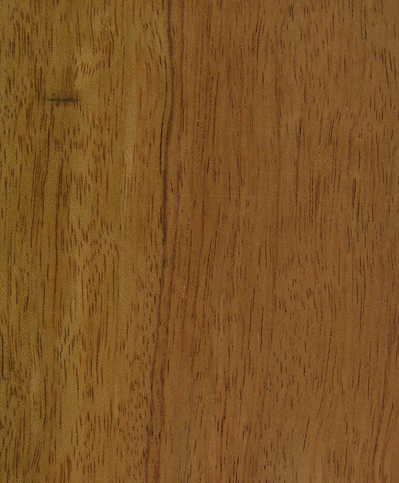 palisandro áfrica
