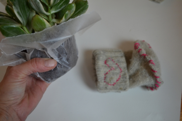 I wrapped the plant in wax paper and slide into the sleeve!