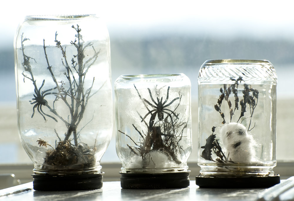 Craft time with the kids! This Halloween craft is so easy. Love making these! Recycled jars, paint the caps black. Spooky Terrariums!! Glue the stuff to the caps and inside the jar! See it on DIY NETWORK...http://www.diynetwork.com/how-to/make-and-decorate/decorating/how-to-make-halloween-terrariums
