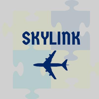 532c43de736 Skylink  Aircraft Maintenance Material