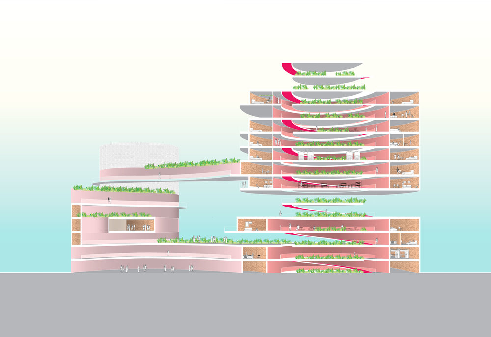 190501_Perspective-Section-update.jpg