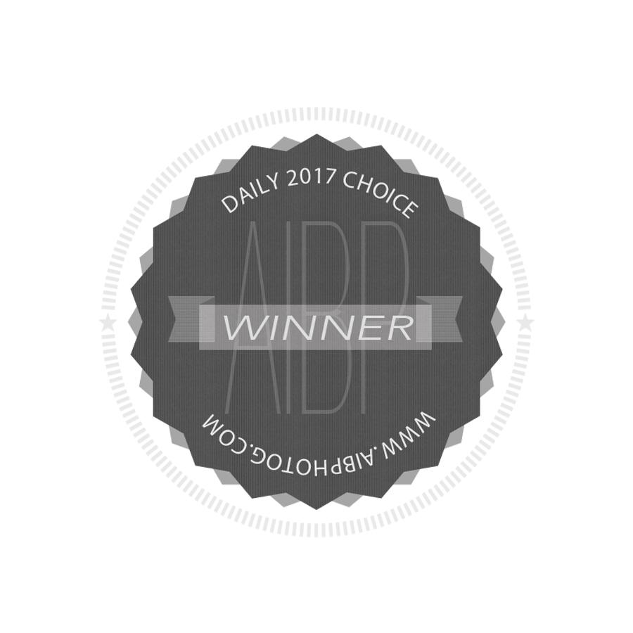 2017 aibp daily award.jpg