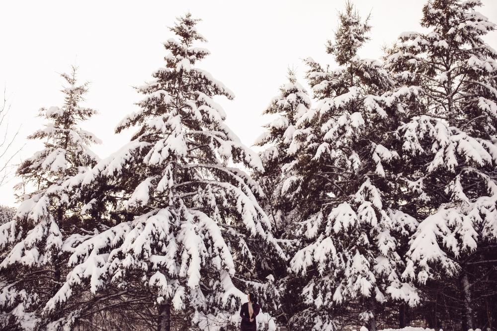 katie snow blog 7.jpg