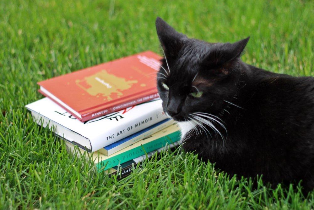 memoir cat.JPG