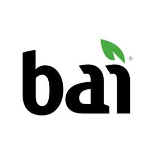 BAI_300 2.jpg