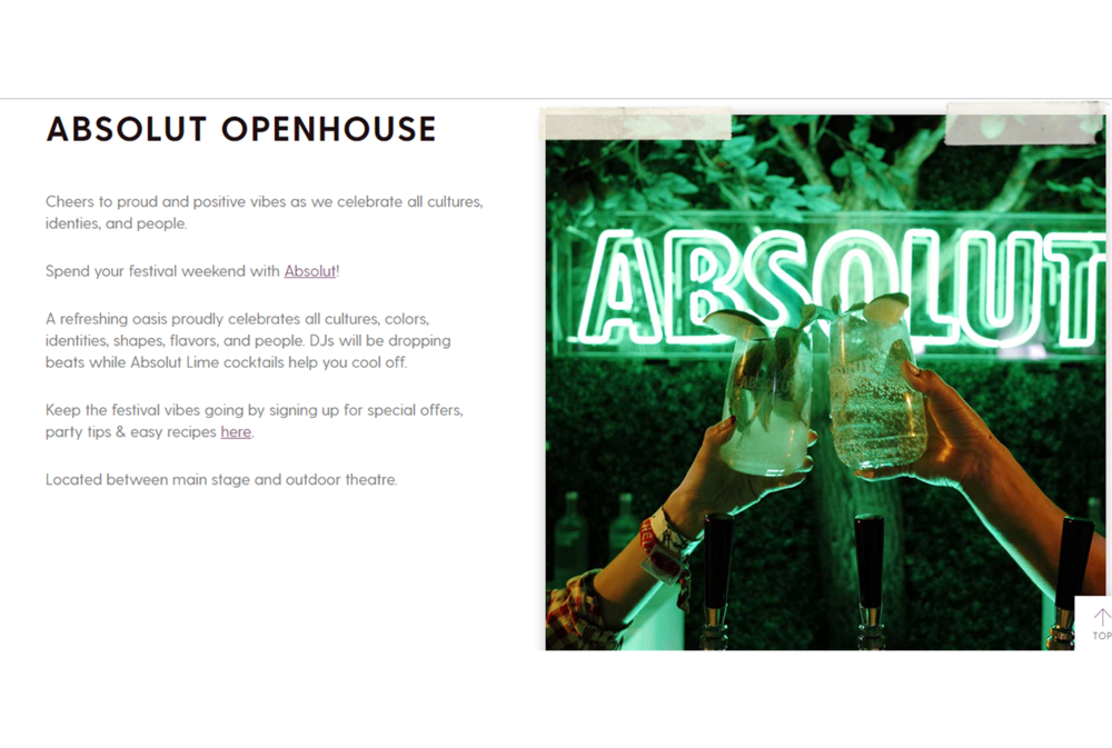 Absolut Website Description.PNG