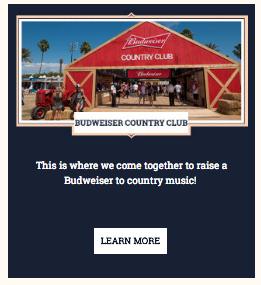 Budweiser Newsletter 1.png