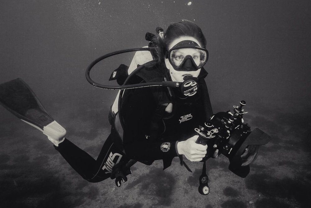 - Currently based in Los Angeles, California; available for travel worldwide.Jenny is a Cinematographer/Photographer specializing in the underwater world and also works as an operator.