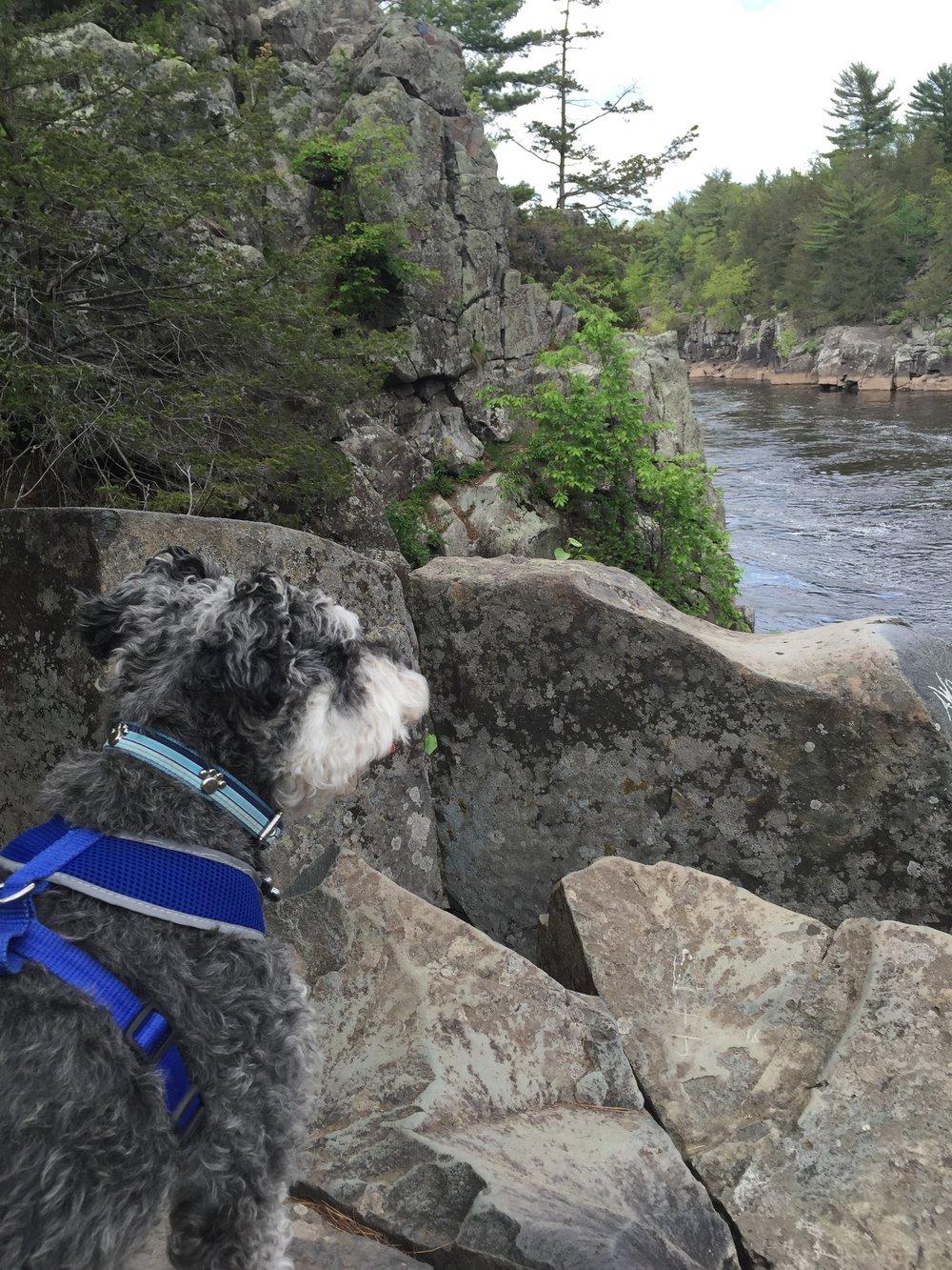 Jackson Allan on a warm rock climb!