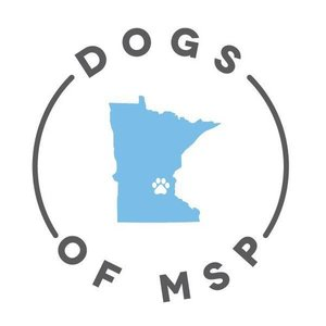 Dogs of MSP