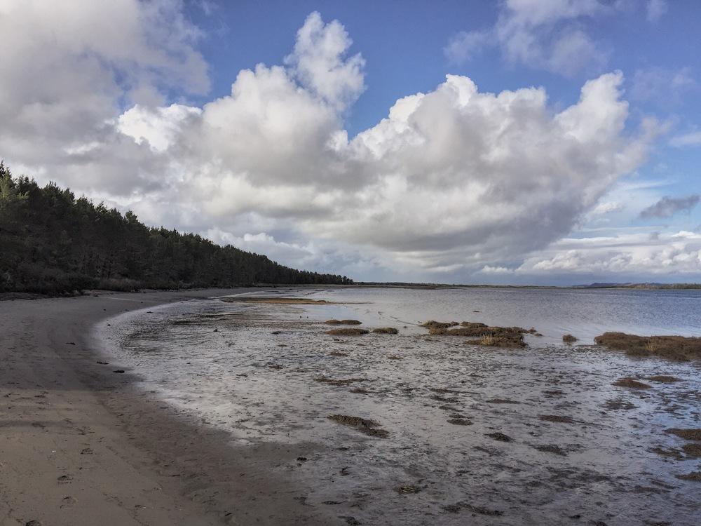willapa bay hike - liveoregoncoast.com