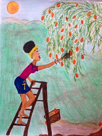 lowhangingfruit2.jpg