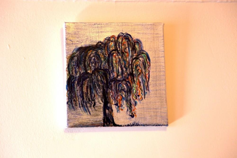 willow2-1024x682.jpg