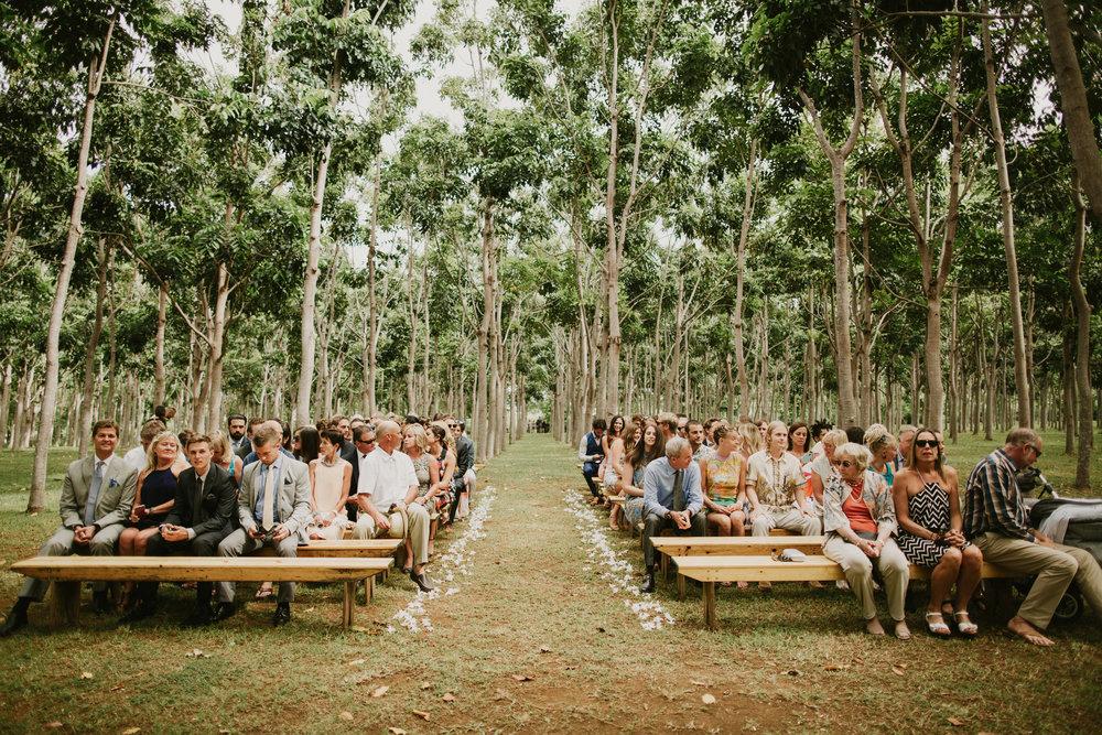 na aina kai hardwood forest kauai