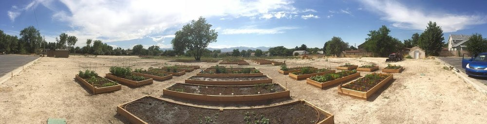 This     This panoramic (taken in mid-June) shows a good start to our garden growing season..     panoramic (taken in mid-June) shows a good start to our garden growing season..