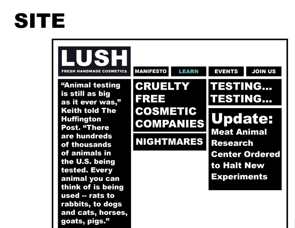 LUSH Presentation16.jpg
