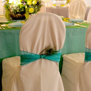 chair-cover-and-special-tie.jpg