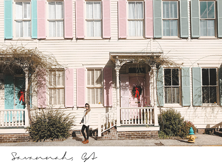Savannah 1.jpg