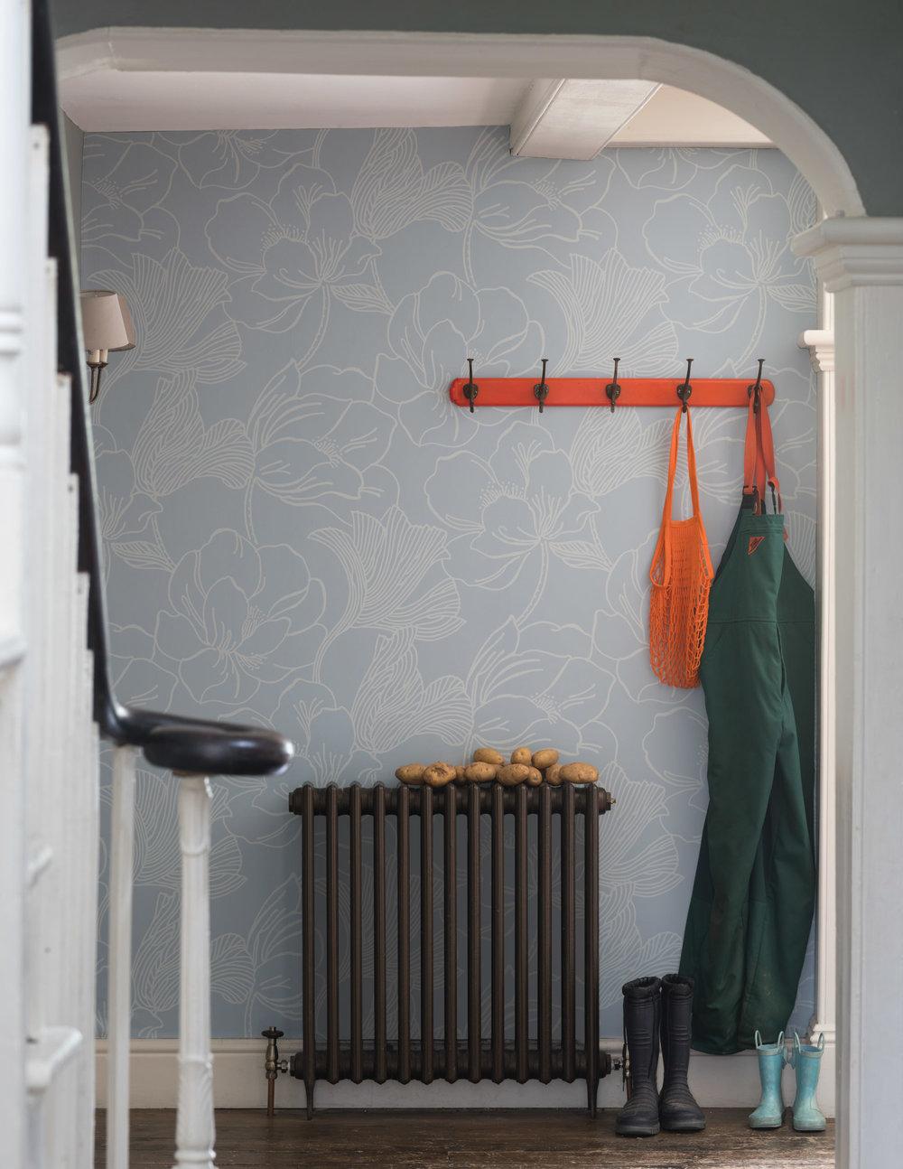 helleborus-hallway.jpg