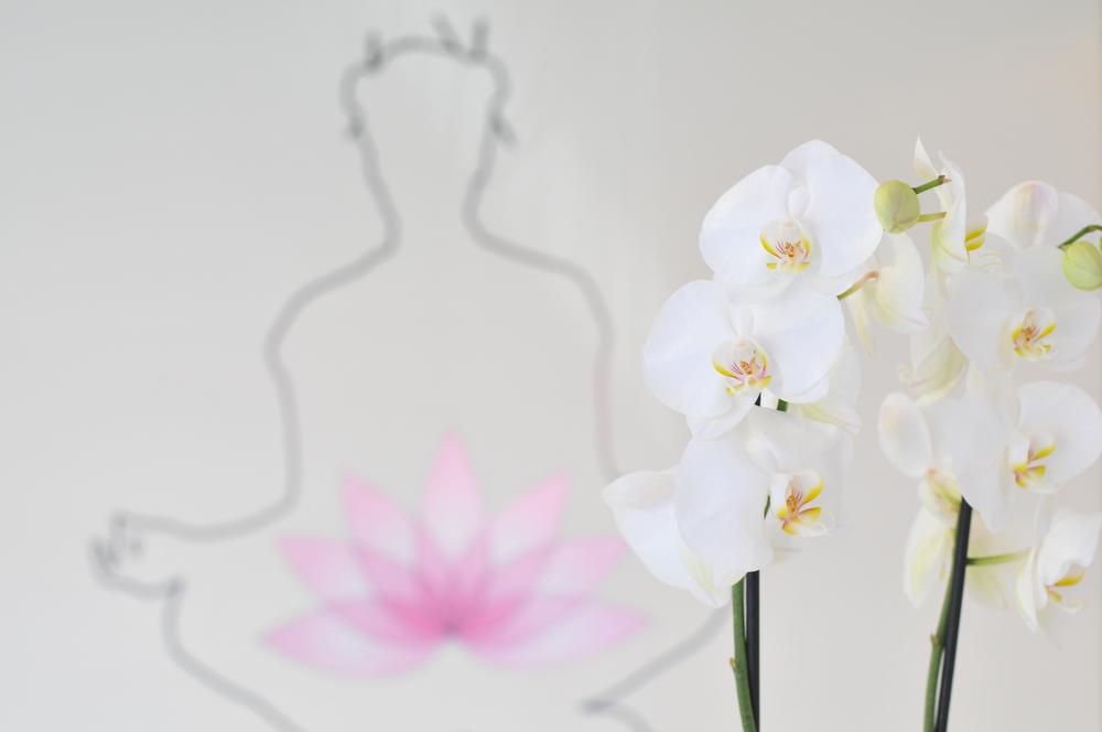 Receptie-lotus-5.JPG