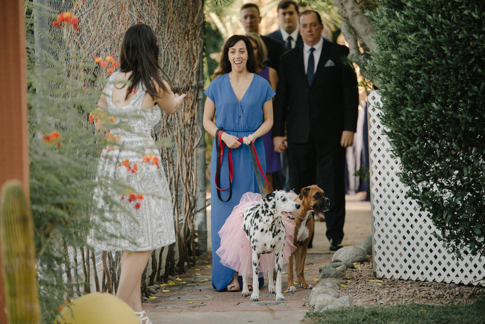 Palm_Springs_CA_wedding_alex_maxwell-46.jpg