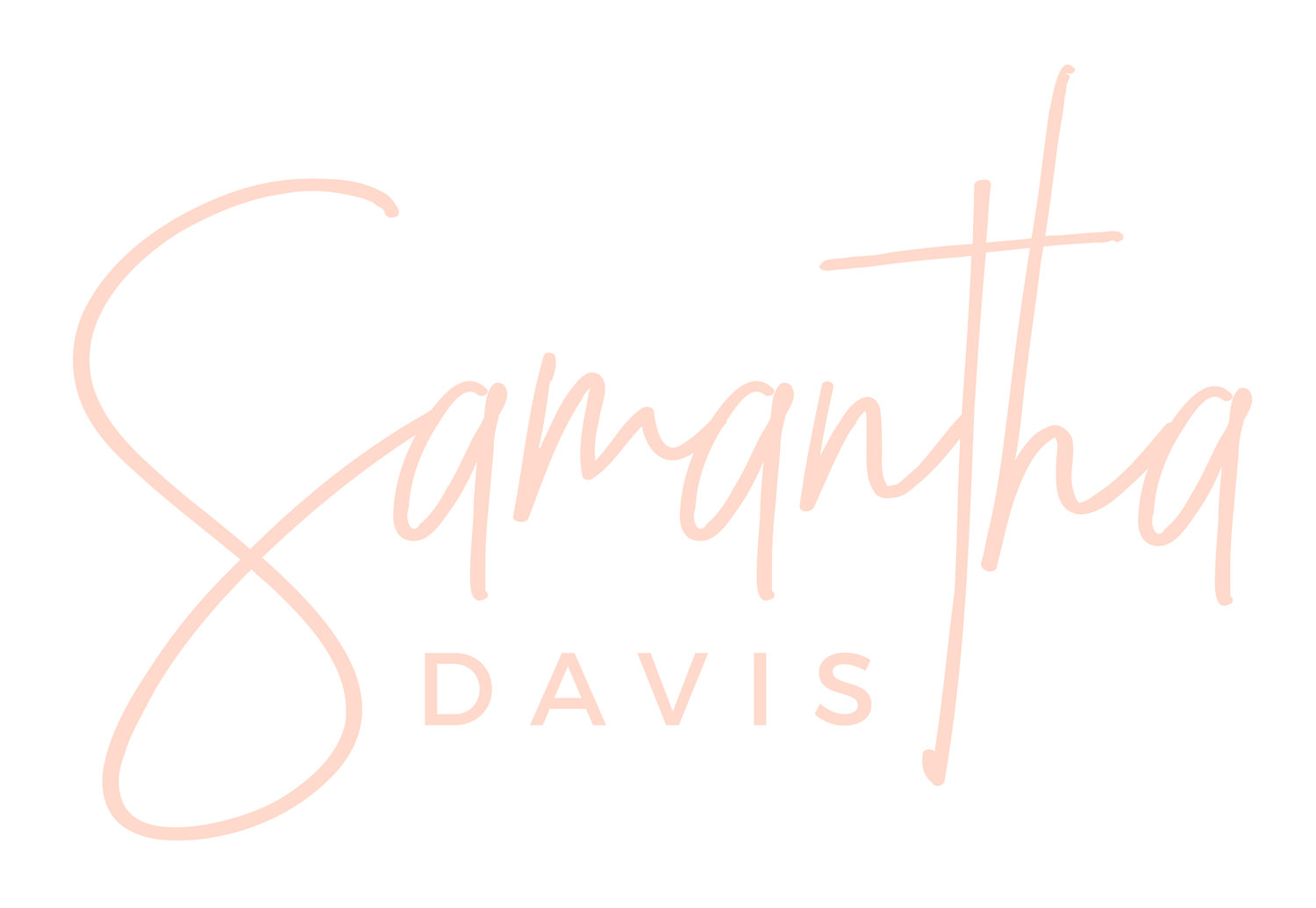 Samantha Davis Photography