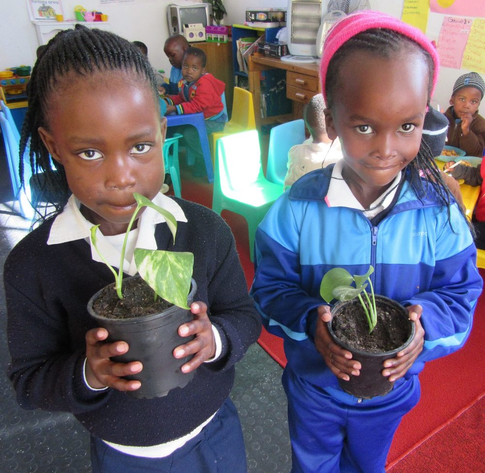 Teaching Plants to children4.jpg