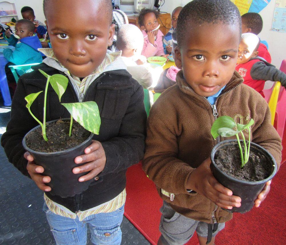 Teaching Plants to children5.jpg