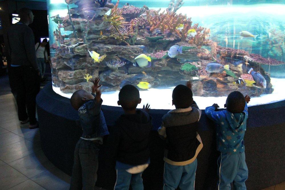 Louise & Bev at the Aquarium_6.jpg
