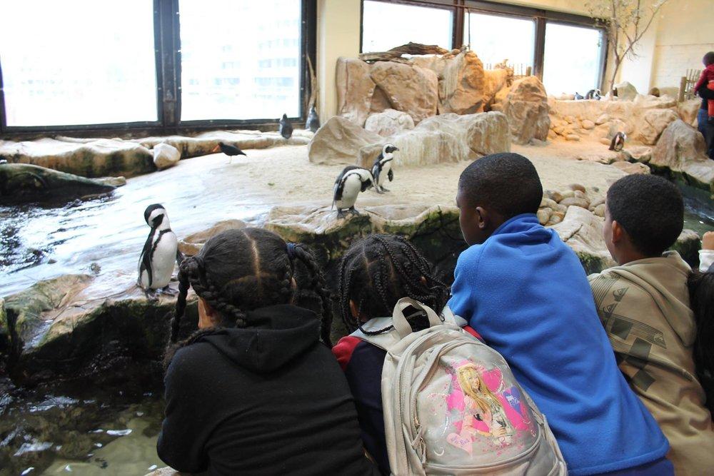 Louise & Bev at the Aquarium_7.jpg