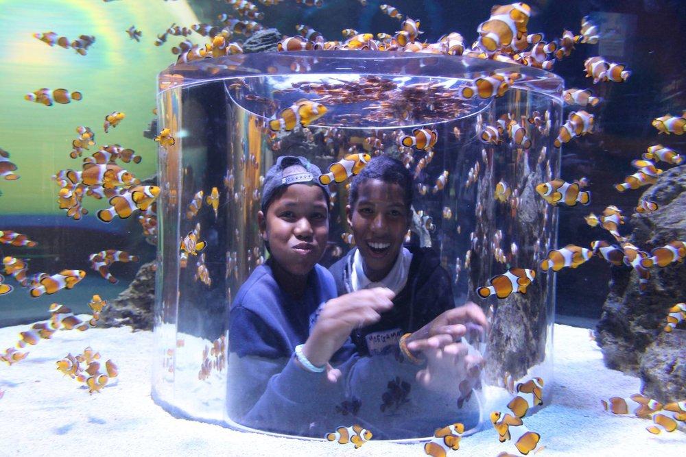 Louise & Bev at the Aquarium_16.jpg