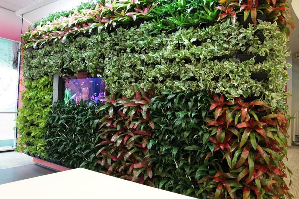 DIRTT Plants.jpg